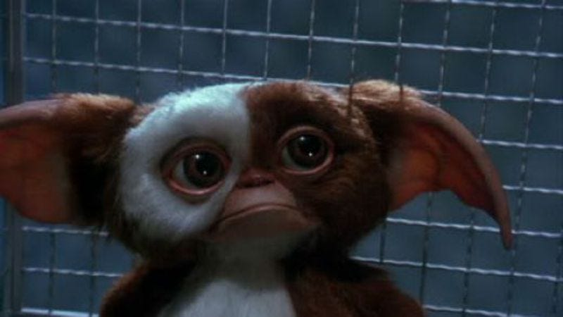 """Illustration for article titled Someone spilled water on those """"Gremlins reboot"""" rumors again"""