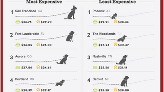 Illustration for article titled The Most and Least Expensive US Cities to Have a Dog