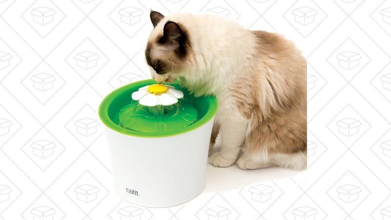 Cat Water Fountain   $21   Amazon
