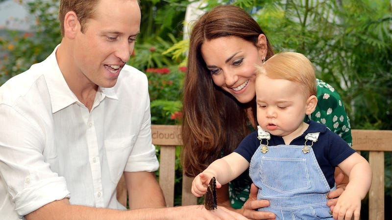 Illustration for article titled Royals Issue Stern Warning to Photographer 'Harassing' Prince George