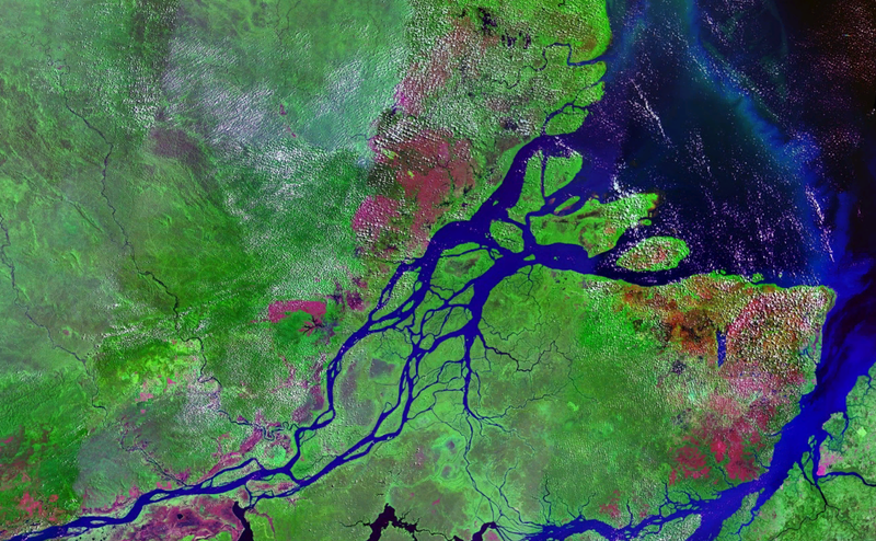 The mouth of the Amazon river. Image: Wikimedia
