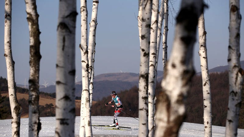 Illustration for article titled Austrian Cross-County Skier Running Second Makes Wrong Turn, Finishes Ninth