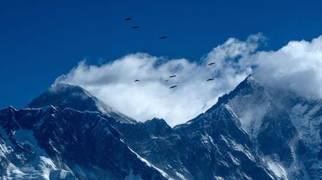 Climbing Mount Everest Has Gotten Easier, Study Finds