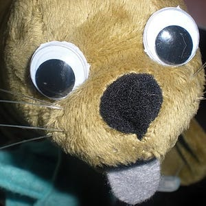 Googly Eyed Plush Toy