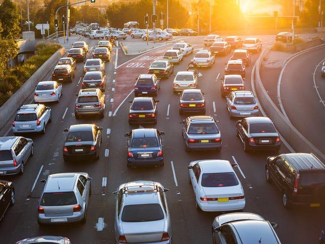 ¿Cuál es tu historial diario de conductores?