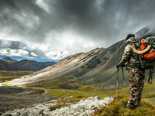 What It's Like To Hunt Alaska's Most Elusive Animal