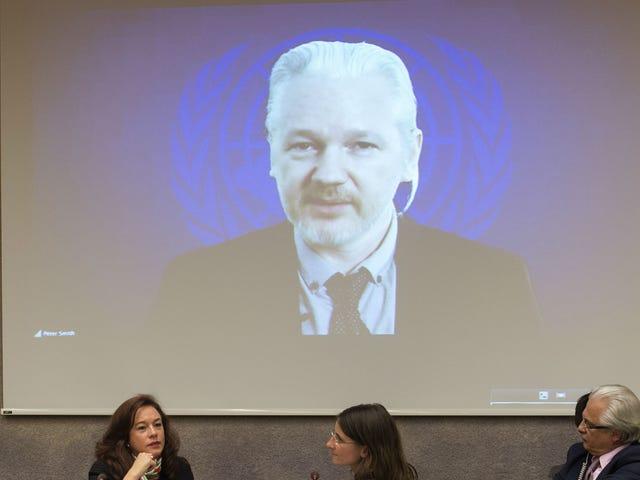 WikiLeaks lige begyndt at acceptere hemmeligheder igen