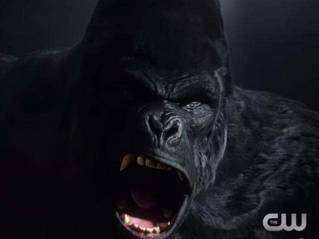 This Week's TV: The Flash Battles His Hairiest Foe—Gorilla Grodd!