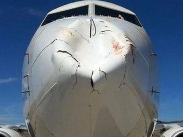 Bird Strike verstoort schade aan de neus van een 737