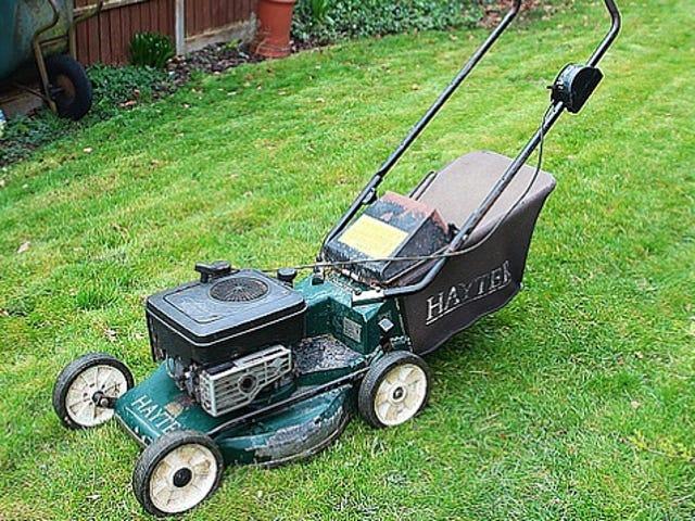 Giữ an toàn và tránh làm hỏng máy cắt cỏ của bạn bằng cách đi bộ trước