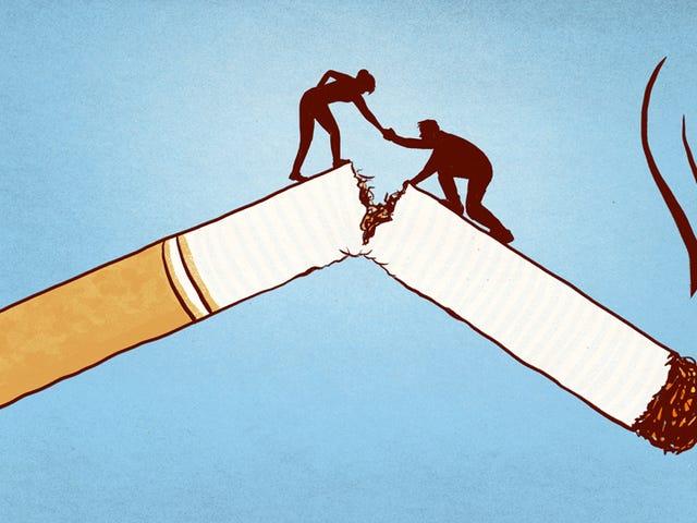 그들이 금연을 결정할 때 누군가를 도울 방법