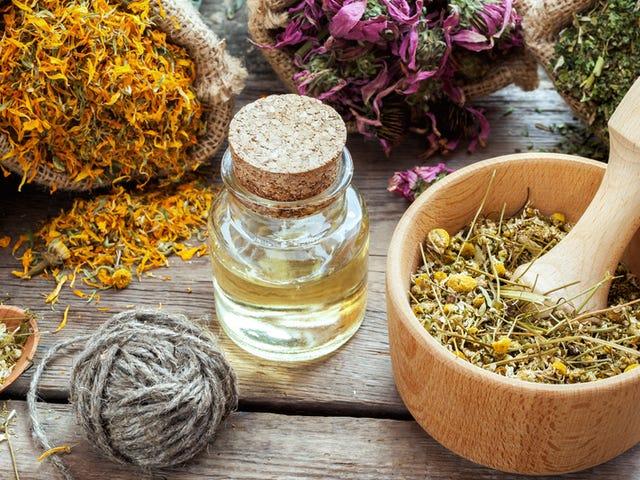 Ini adalah cara terbaik untuk menggunakan homeopati