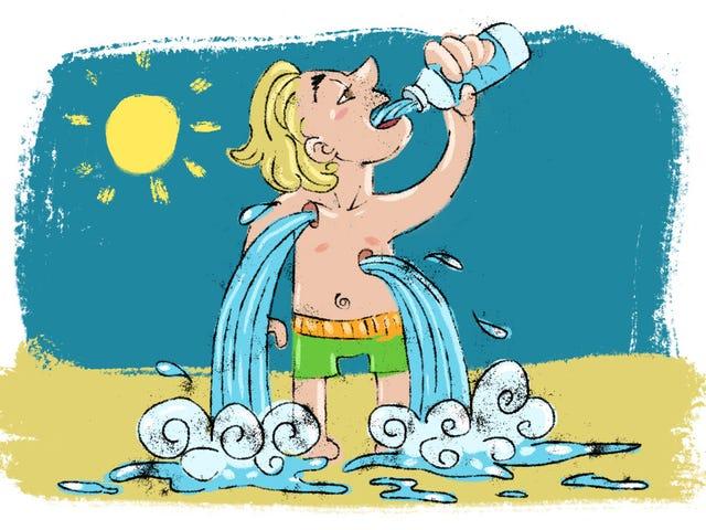 Vier Mythen über Hydration, die sich weigern zu sterben