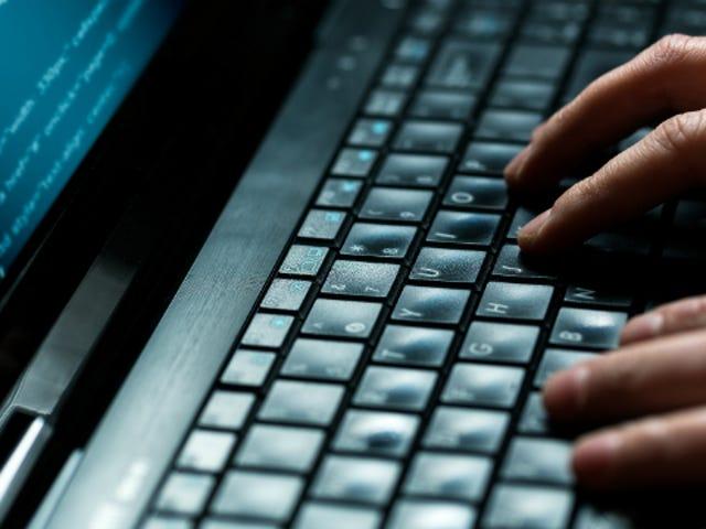 USA: n lupaukset Japanin auttamiseksi kyberturvallisuudella, Japanilla on valtava Hack-päivä myöhemmin