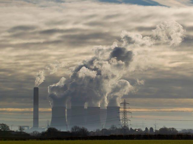 Los Estados Unidos están talando sus bosques para alimentar la locura por el combustible de biomasa en Europa