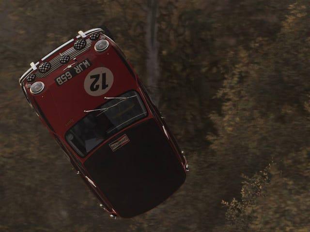 DiRT Rally Problems