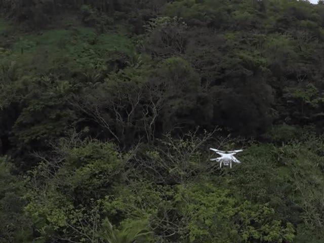 Des drones aspirant les moustiques pourraient détecter des épidémies avant que quelqu'un ne soit malade