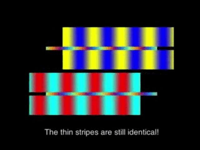 色を見分けることにどれほどひどいことをしているかを示すもう一つの錯視