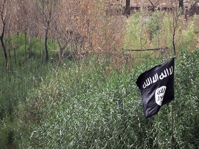 Euroopan poliisi on käynnissä ISIS-sosiaalisen median tilejä