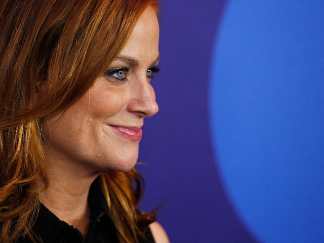 Amy Poehler Has Advice for Fame-Hungry Comedians