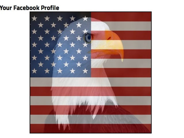 WTF, People Are Combating Facebook's Rainbow Avatars With American Flags
