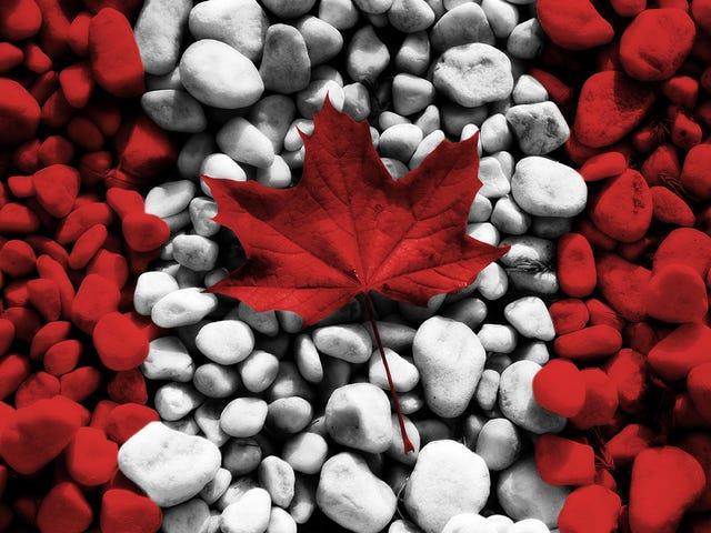 Buon Canada Day