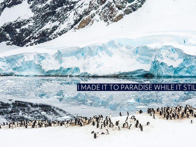เวลาไปที่แอนตาร์กติกาตอนนี้ (และนี่เป็นวิธีการสำหรับครึ่งราคา)