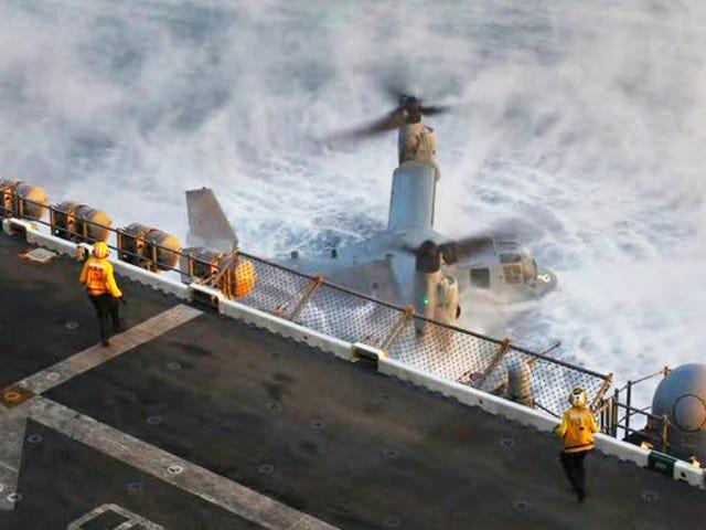 รูปภาพที่น่าสะพรึงกลัวแสดงให้เห็นถึงลูกเรือที่กล้าหาญพยายามที่จะทำให้นกบินได้