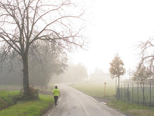 Runners Aren't Necessarily Healthier Than Walkers