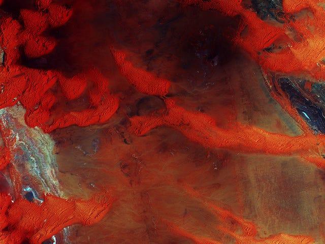 Libya's Dunes Look Like a Rusty Steel Plate From Space