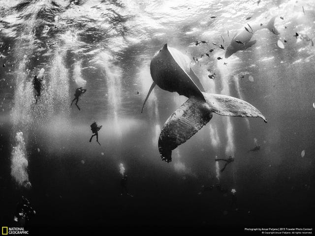 Here Are the Winners of National Geographic's Traveler Photo Contest