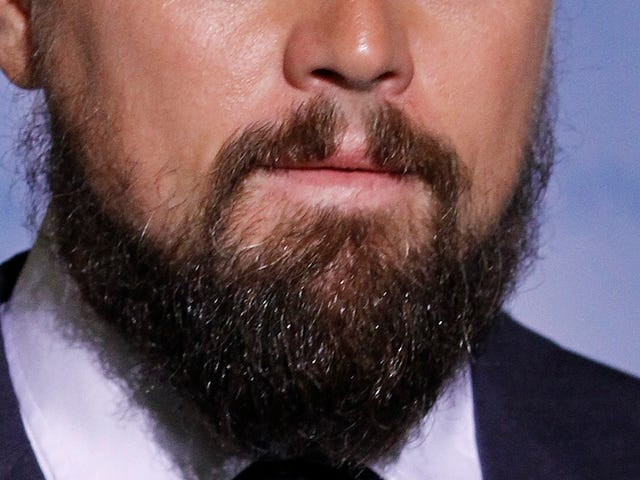 Leonardo DiCaprio Doesn't Have Fleas in His Beard...Or Maybe He Does?