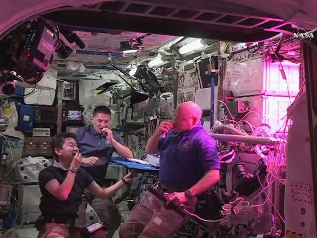 Astronauts eat space lettuce