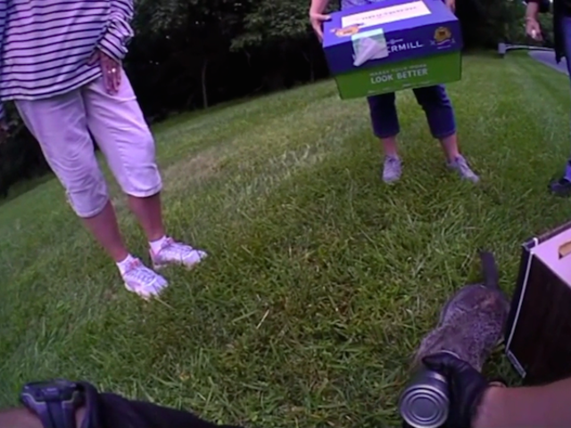 Groundhog Gets Head Stuck in a Can, Which Is Very Unchill