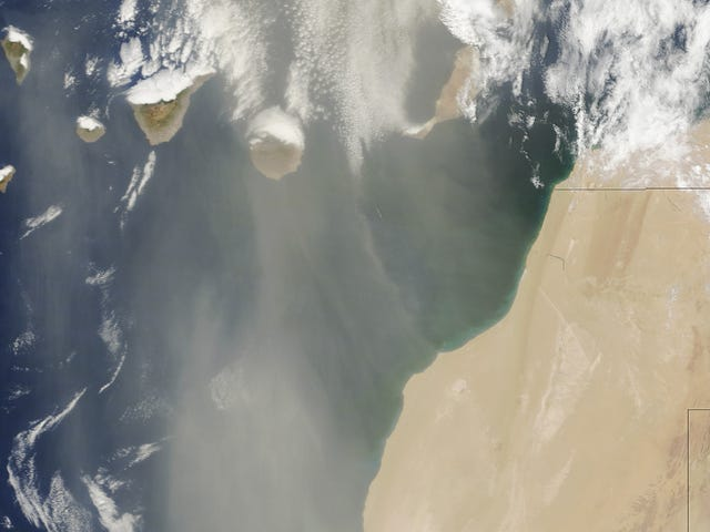 Do Giant Plumes of Saharan Dust Explain Why We're Having Such a Quiet Storm Season?