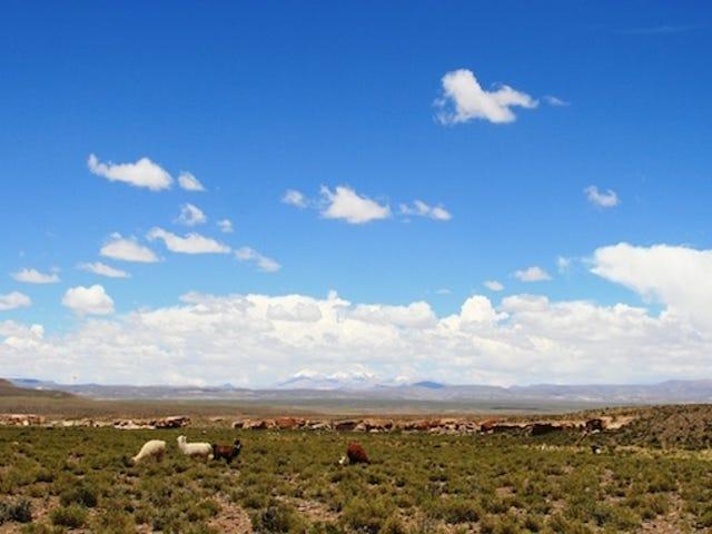 Los Andes centrales podrían secarse antes de 2100 por el cambio climático