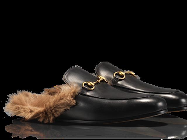 Кенгуру є великими, як на землі, так і всередині вашого взуття Gucci