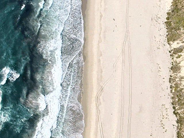 해안의이 비디오는 세계의 가장자리를 더욱 아름답게 보입니다.