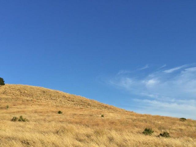 มนุษย์ทำให้ความแห้งแล้งในแคลิฟอร์เนียดีขึ้นอย่างแน่นอน