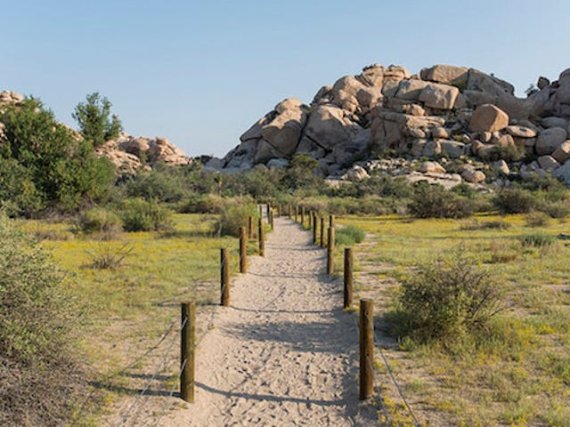Get Free Admission to All National Park Service Parks, Beaches and Forests This Tuesday