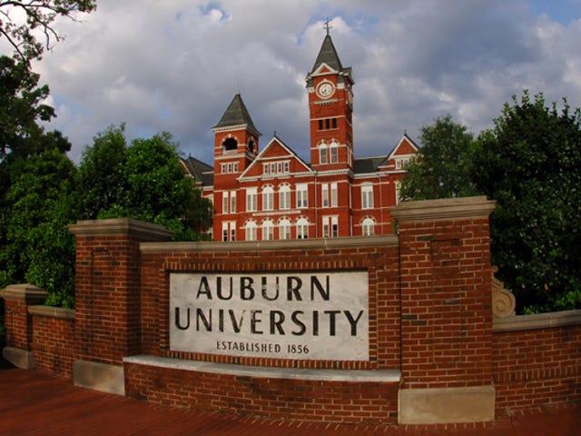 Auburn Atletizm Okulu Binicisini Korumak İçin İkna Etti