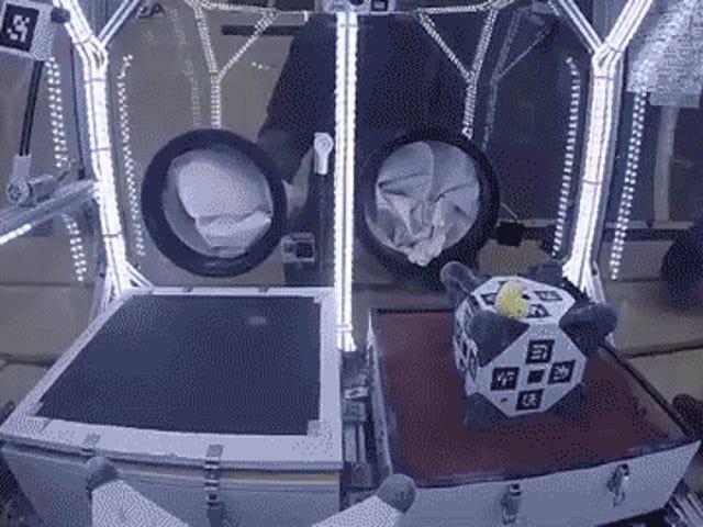 "Cower In Fear Перед експериментальним, Self-Driving ""Hedgehog Rover"" НАСА хоче відправити на астероїд"