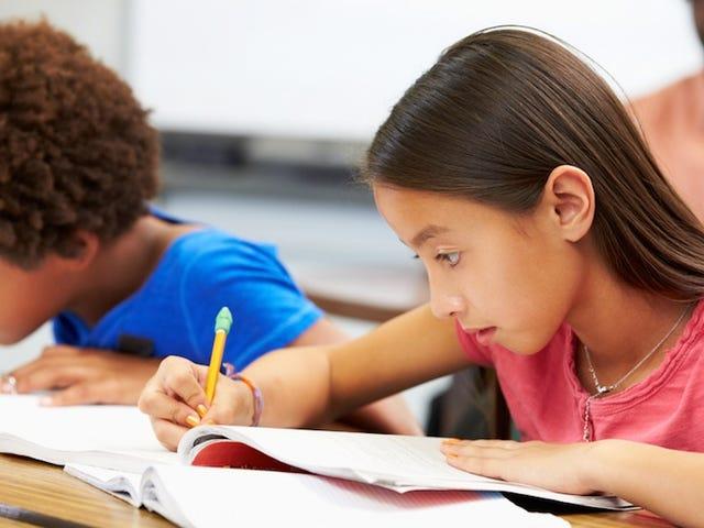La newsletter della scuola elementare mostra un curriculum diverso per ragazzi e ragazze
