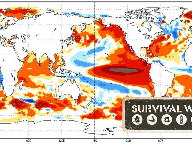 Bagaimana Anda Perlu Bersiap untuk El Niño
