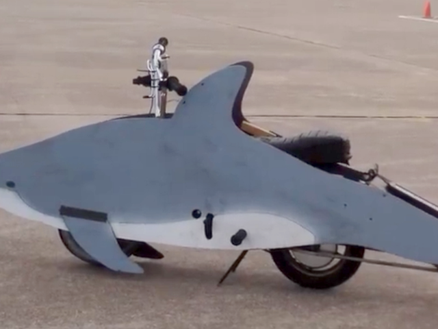 A Ride-On Dolphin Is The Best Pit Bike Ever