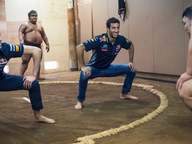 Pemangsa Kecil Lelaki F1 Pemandu Lepaskan Wrestlers Sumo
