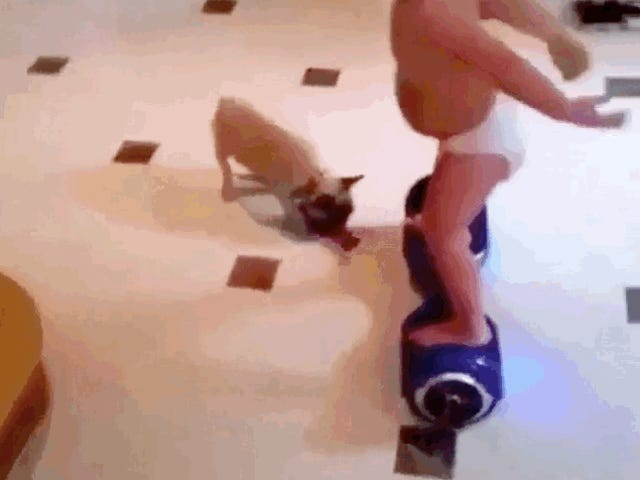 Even Babies Can Ride Those Things That Aren't Hoverboards