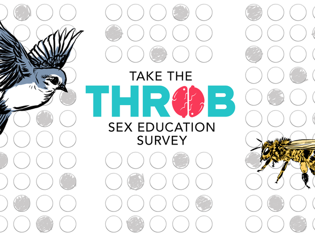 Here's Your Last Chance to Take the Throb Sex Education Survey