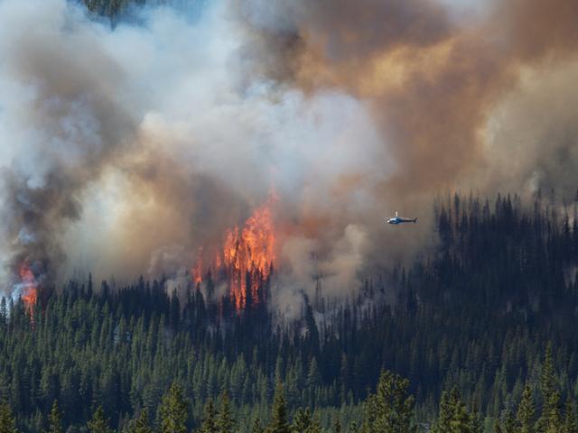 अलास्का के जंगल की आग जलवायु परिवर्तन को बहुत बदतर बना सकती है