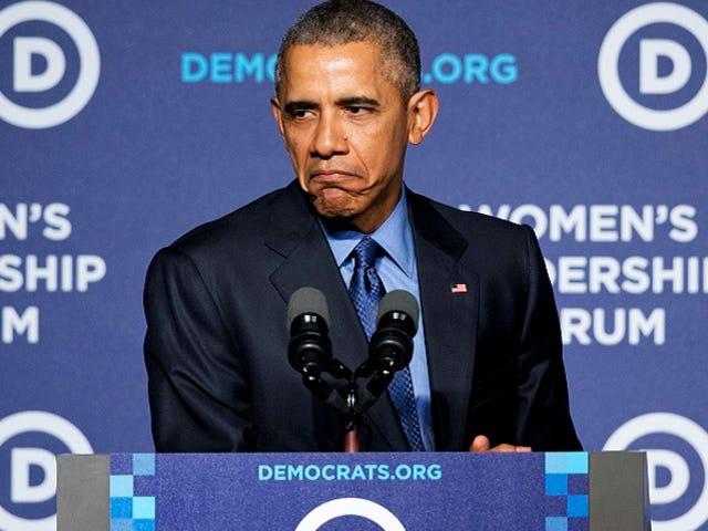 Barack Obama May Pretty Good 'Grumpy Cat'